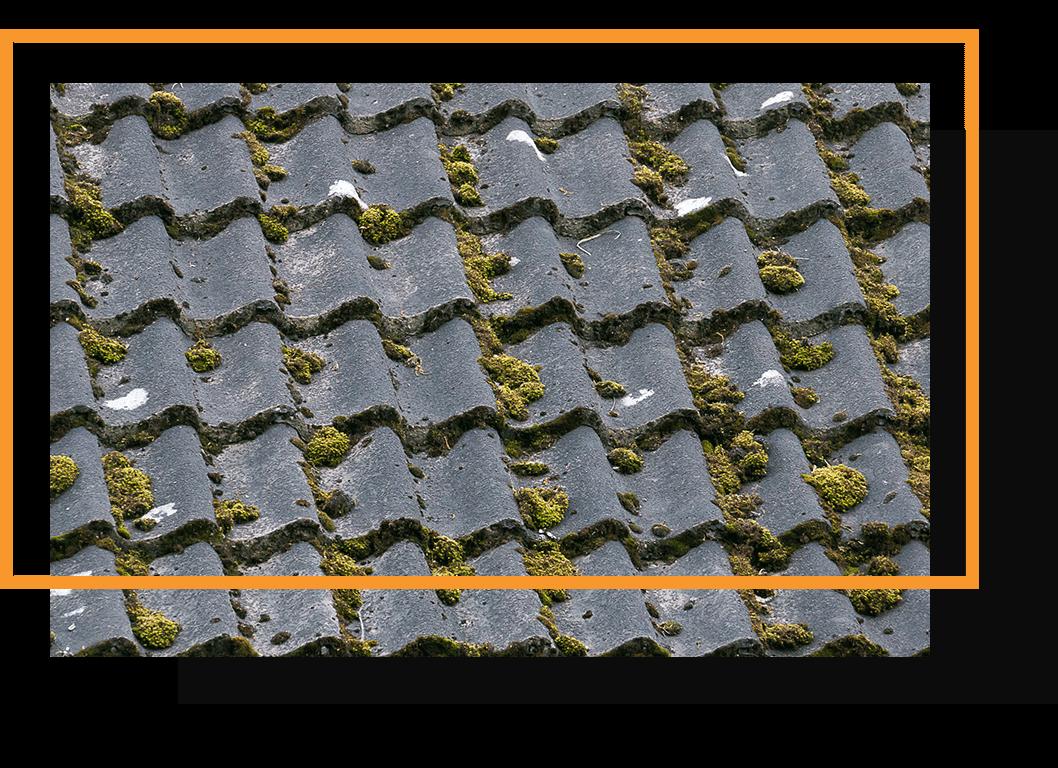 démoussage toiture Le Creusot